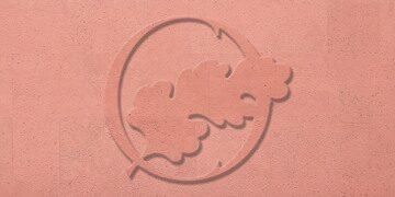 Flamingo_p